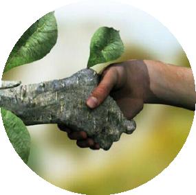 Natureza e ser Humano em harmonia